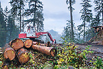 Logging machinery near Mount Baker and North Cascades National Park.  Logging in fragile ecology.  A sensitive creek providing salmon spawning habitat lies at the bottom of this damaged hill.  Foggy winter morning.