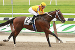 Dominus & Julien Leparoux win the 94th running of the Grade 2 Dwyer Stakes for 3 year olds, 1 1/16 mile at Belmont Park.  Trainer Steve Assmussen. Owner Stonestreet Stables.