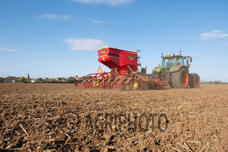 23-9-2021 Drilling Electrum Winter barley in South Lincolnshire  <br /> ©Tim Scrivener Photographer 07850 303986<br />      ....Covering Agriculture In The UK....