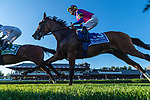 09042021:#3 War Like Goddess ridden by Julien Leparoux starts the Flower Bowl S on The JOCKEY GOLD CUP day at Saratoga<br /> Robert Simmons/Eclipse Sportswire