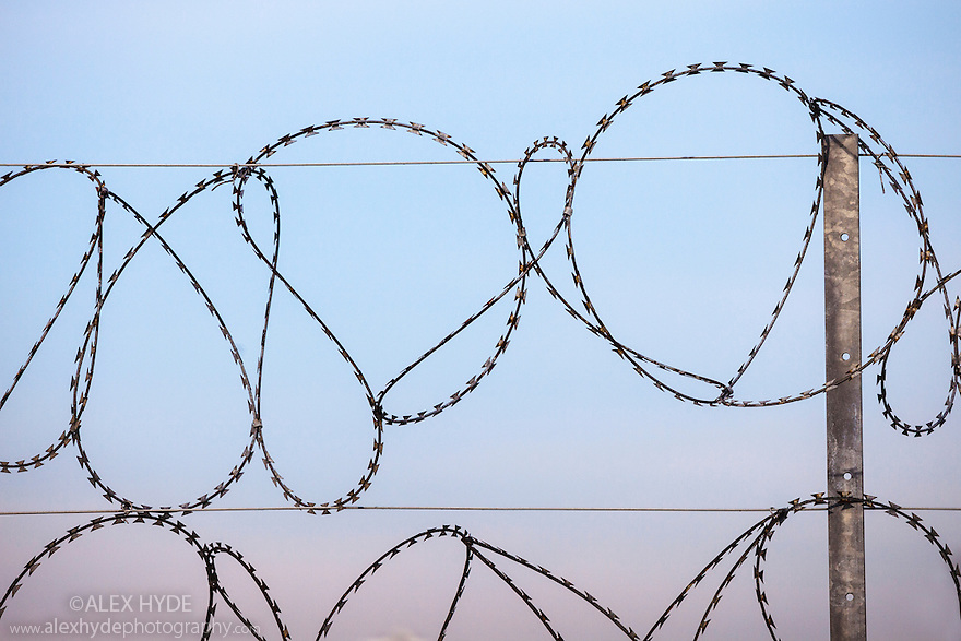 Razor wire protecting an idustrial site, East Yorkshire, England, UK.