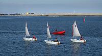 Nederland  Amsterdam-  2020.   Optimist zeilbootjes. Zeilschool IJburg.  Op de achtergrond de nieuwe eilanden bij IJburg.  Foto : ANP/ HH / Berlinda van Dam
