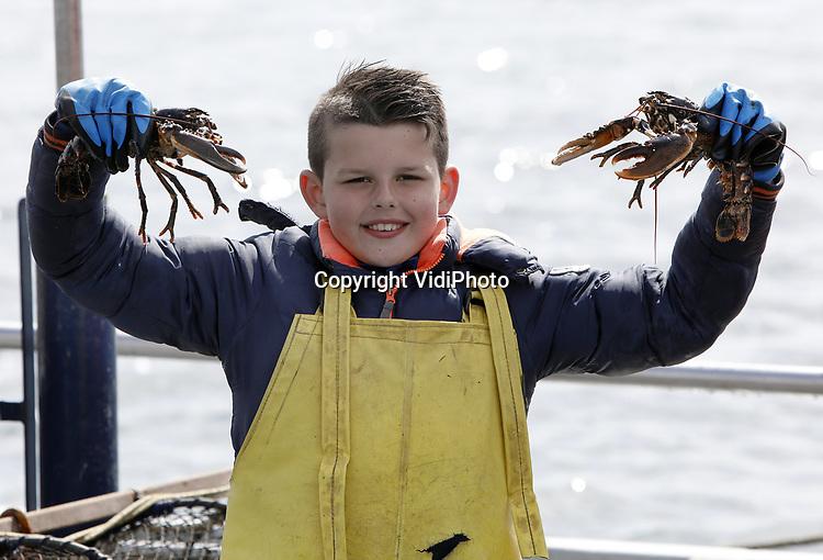 Foto: VidiPhoto<br /> <br /> YERSEKE - Het seizoen voor de kreeftenvisserij is in volle gang en duurt van half maart tot half juli. De zwagers Maurice Boone en Markus Wijkhuis uit Yerseke runnen samen een vissersbedrijf met twee kotters en een werkvlet. Naast het kweken van oesters, vissen ze op kreeften en paling. Volgens de vissers zijn er teveel vergunninghouders, waardoor de visserijdruk op de Oosterschelde is toegenomen en de vangsten tegenvallen. Ondanks dat de horeca gesloten is, staan de prijzen voor de gewilde Oosterschelde kreeft niet onder druk. Foto: Jens Boone (10) toont twee zojuist gevangen kreeften.