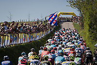 peloton up the Gulpenerberg <br /> <br /> 54th Amstel Gold Race 2019 (1.UWT)<br /> One day race from Maastricht to Berg en Terblijt (NED/266km)<br /> <br /> ©kramon