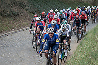 Yves Lampaert (BEL/Deceuninck - QuickStep) leading the way for World Champion Julian Alaphilippe (FRA/Deceuninck - QuickStep) over the Holleweg cobbles<br /> <br /> 76th Omloop Het Nieuwsblad 2021<br /> ME(1.UWT)<br /> 1 day race from Ghent to Ninove (BEL): 200km<br /> <br /> ©kramon