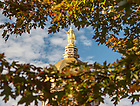 October 11, 2016; The statue of Mary atop the Golden Dome of the Main Building. (Photo by Barbara Johnston/University of Notre Dame)