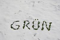 """Naturkunst im Winter, mit grünen Blättern, Blattstückchen das Wort """"grün"""" in den Schnee geschrieben"""
