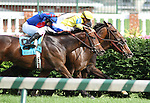 Keertana with Jose Lezcano (inside) wins The Louisville Handicap (grIII) in a blanket finsih over Guys Reward with Miguel Mena (yellow cap) and Bearpath with Freddie Lenclud (blue cap) at Churchill Downs. 05.28.2011