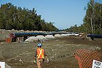 "42"" International Natural gas pipeline under construction between Alberta, Canada and Easterrn USA<br />"