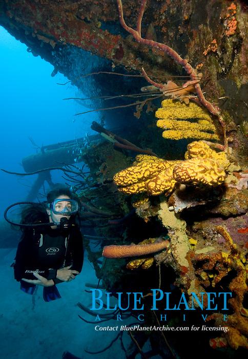 Hilma Hooker, Bonaire, Netherland Antilles, Caribbean, Atlantic