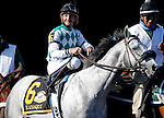ARLINGTON HEIGHTS, IL - AUGUST 13: Kasaqui #6, ridden by Robby Albarado, during the post parade before Arlington Million at Arlington International Racecourse on August 13, 2016 in Arlington Heights, Illinois. (Photo by Jon Durr/Eclipse Sportswire/Getty Images)