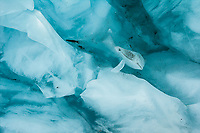 Detail, texture and colour of glacial ice on Franz Josef Glacier, Westland Tai Poutini National Park, UNESCO World Heritage Area, West Coast, New Zealand, NZ