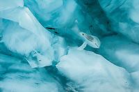Detail, texture and colour of glacial ice on Franz Josef Glacier, Westland Tai Poutini National Park, UNESCO World Heritage Area, West Coast, New Zealand, NZ