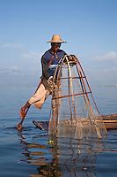 Myanmar, Burma.  Fisherman Placing his Net, Inle Lake, Shan State.