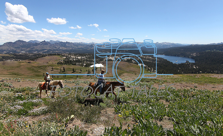 during a horseback ride to Lost Lakes in Alpine County, near Hope Valley, Ca., on Wednesday, Aug. 24, 2011..Photo by Cathleen Allison