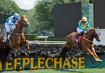 Divine Fortune (no. 2, blue cap and silks), ridden by Brian Crowley and trained by Jonathan Sheppard, wins the 16th running of the grade 2 A.P. Smithwick Memorial Steeplechase Stakes for four year olds and upward on August 4, 2011 at Saratoga Race Track in Saratoga Springs, New York.  (Bob Mayberger/Eclipse Sportswire)