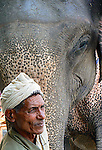 An elephant and his mahout, who rides and trains the elephant, wait in the main street of Sauraha, Nepal, a village on the edge of Chitwan National Park. Visitors can ride the elephants in the park to search for wildlife, or help bathe them in the river at the end of the day.