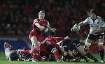 Tavis Knoyle..Heineken Cup.Scarlets v Munster.Parc y Scarlets.10.12.11.©Steve Pope