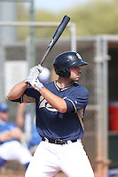 Austin Hedges of the San Diego Padres bats during a Minor League Spring Training Game against the Kansas City Royals at the Kansas City Royals Spring Training Complex on March 26, 2014 in Surprise, Arizona. (Larry Goren/Four Seam Images)