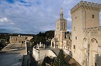 Europe/France/Provence-Alpes-Côte- d'Azur/84/Vaucluse/Avignon: le Petit Palais, la cathedrale Notre Dame des Doms depuis le Palais des Papes