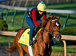 LOUISVILLE, KY - APRIL 28: Hofburg, trained by Bill Mott, exercises in preparation for the Kentucky Derby at Churchill Downs on April 28, 2018 in Louisville, Kentucky. (Photo by Scott Serio/Eclipse Sportswire/Getty Images)