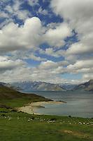 Lake Wanaka, South Island, New Zealand South Island, New Zealand