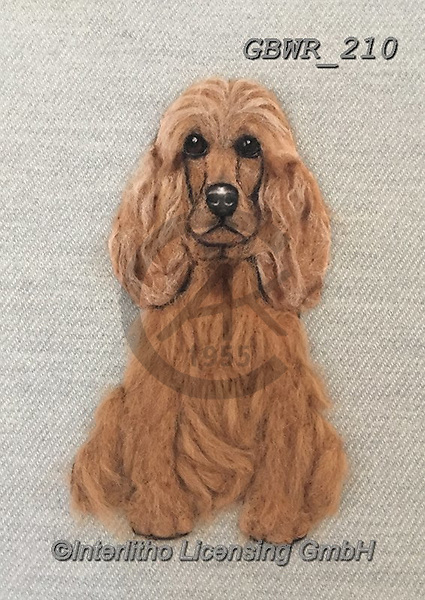 Simon, REALISTIC ANIMALS, REALISTISCHE TIERE, ANIMALES REALISTICOS, innovative, paintings+++++SharonS_CockerSpaniel,GBWR210,#a#, EVERYDAY dogs,breeds of dog,