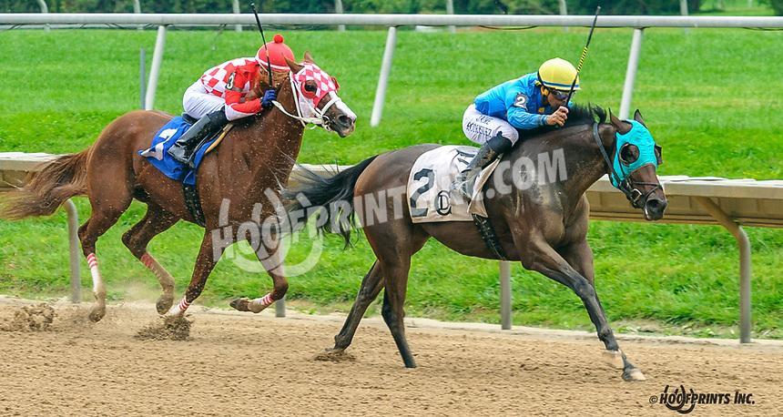 Be Bop A Lola winning at Delaware Park on 10/6/21