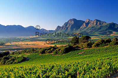 South Africa, Cape Town, Winelands, Paarl, view at Franschhoek Valley