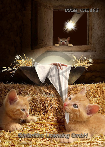 CHIARA,CHRISTMAS ANIMALS, WEIHNACHTEN TIERE, NAVIDAD ANIMALES, paintings+++++,USLGCHI493,#XA# ,funny ,funny