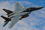 Combat Aircraft Submission 2017