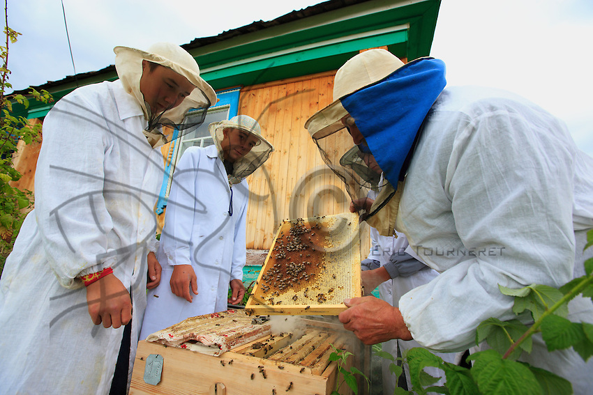 The bees begin their activity and leave the hives around the beginning of March for the flowers of the willows: the season ends in mid-October.