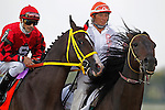 September 22, 2012. Trinniberg, Willie Martinez up. #6 Well Spelled, ridden by Pablo Fragoso and trained by Ben Perkins Jr., wins the Gallant Bob Stakes at Parx Racing,  beating favorite Trinniberg by half a length. (Joan Fairman Kanes/Eclipse Sportswire)