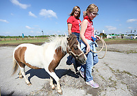 Reese Williams, a volunteer and member the Rodeo of the Ozarks Rounders, walks with Kadyn Hayes, 10, as she walks a miniature pony Thursday, June 3, 2021, during the first day of the Rodeo of the Ozarks Horse Camp at Parsons Stadium in Springdale. The two day camp, staffed by volunteer Rounders, is for ages 6 to 12 and emphasizes equine basics that include safety, anatomy of a saddle, riding a horse and other fun activities. Check out nwaonline.com/210604Daily/ and nwadg.com/photos for a photo gallery.<br /> (NWA Democrat-Gazette/David Gottschalk)