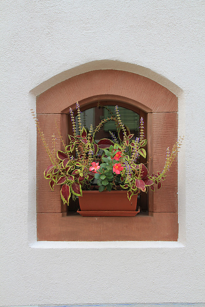 Still life of window and flowers in Eguisheim, Alsace, France .  John offers private photo tours in Denver, Boulder and throughout Colorado, USA.  Year-round. .  John offers private photo tours in Denver, Boulder and throughout Colorado. Year-round.