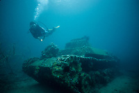 wreck, Diver swimming over a Japanese tank in 15 feet of water at a site called 'two tanks' in Kimbe Bay, New Britain, Papaua New Guinea, Bismark Sea, Pacific Ocean