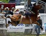 PRCA cowboy Zach Curran of Arvada, Colorado gets sideways with a Cervi Championship Rodeo Company bronc during the annual Father's Day Rodeo June 15, 2008 in Evergreen, Colorado. Zach was awarded an 80 point score for his 8 second ride.