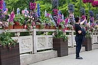 Yangzhou, Jiangsu, China.  Tourist Taking a Selfie, Slender West Lake Park.