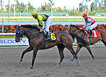 06 February 2010: bank the Eight with jockey Jeremy Rose in the Eight race at Gulfstream Park in Hallandale Beach, FL.