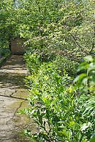 Garden at Kirk House, Chipping, Preston, Lancashire.