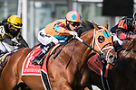 May 15, 2021 : Somelikeitbrown, #1, ridden by jockey Jose Ortiz, wins the Dinner Party Stakes on Preakness Stakes Day at Pimlico Race Track in Baltimore, Maryland on May 15, 2021. Wendy Wooley/Eclipse Sportswire/CSM