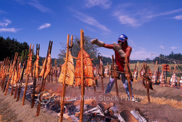 Wild Pacific Salmon cooked / barbecued in Traditional Native American Indian Style over Alder Wood Fire Pit, BC, British Columbia, Canada