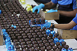 """Palestinian workers prepare the vanilla candy known as """"Ras El-abed or Shatawi"""" in the sweet factory , in Deir al-Balah, central Gaza Strip on October 7, 2021. """"Ras el Abed"""" means """"Head of Slave"""". We would often laugh about how racist the name is. In recent years, the product's name was changed to """"Tarboosh,"""" which represents traditional headdress. This product is similar to Tarboosh - thin biscuit shaped marshmallow dipped in chocolate - but keeps the racist name, which was used to refer to black people during the slavery era. Photo by Ashraf Amra"""