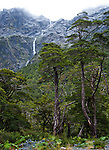 Cuesta Queulat, Queulat National Park, Aisen Region, Patagonia, Chile, South America on the Carretera Austral highway.