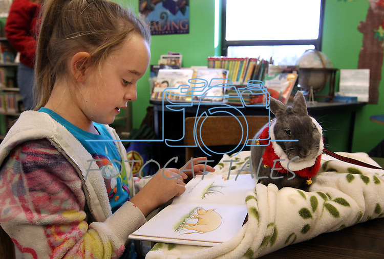 Devan Kopp, 7, reads to Morpheus during a Love on A Leash event at the Carson City Library, in Carson City, Nev., on Saturday, Dec. 17, 2011. .Photo by Cathleen Allison