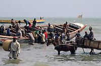 - fishing boat unloaded with horse wagons on the beach ....- barche da pesca scaricate con carri a cavallo sulla spiaggia