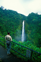 A paved trail provides visitors easy access to the scenic 450-foot Akaka Falls.