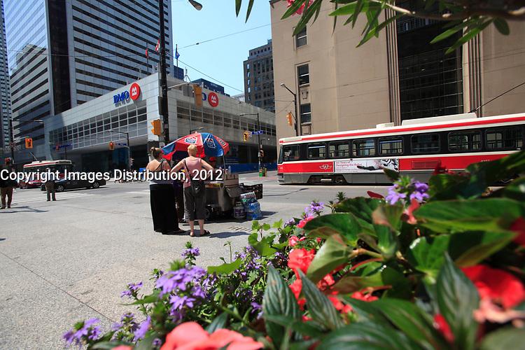 Toronto (ON) CANADA - July 2012 - Bay Street Financial District on King street corner bay