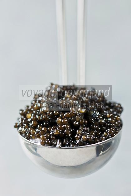 Gatronomie: Caviar à la Louche