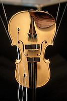 a Cremona, presso il museo del violino, opera il laboratorio di acustica musicale, collegato al politenico di Milano. Il direttore del laboratorio è il professore Augusto Sarti.Misure vibrometriche su un violino in bianco  - Ing. Alessandro Liberatore